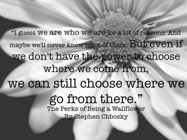 The Perks of Being a Wallflower: Stephen Chbosky